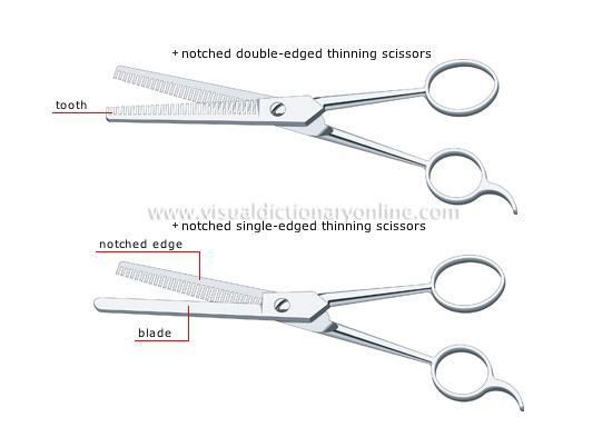 haircutting scissors [2]