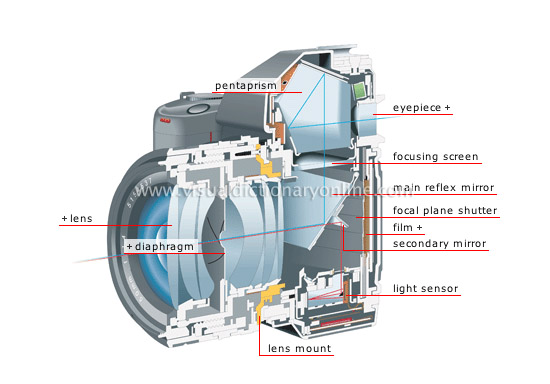 cross section of a reflex camera