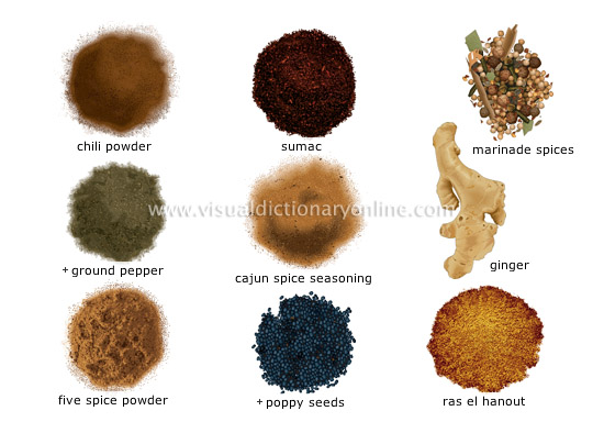 spices [4]