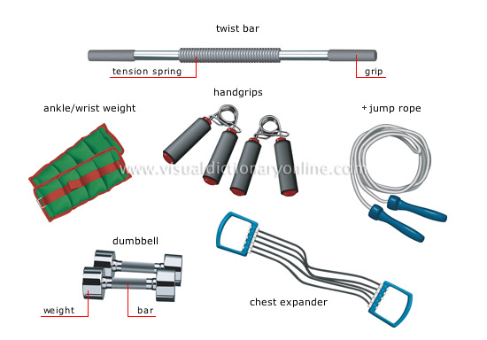 SPORTS & GAMES :: STRENGTH SPORTS :: FITNESS EQUIPMENT [1 ...